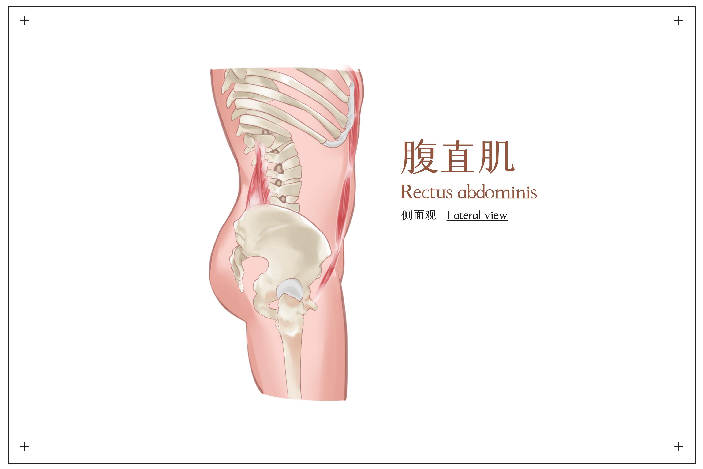 二胎妈妈产后如何康复?上海六院专家有方法