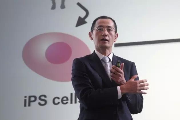 重大突破!日本完成世界首例异体诱导性多能干细胞移植临床试验!